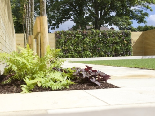 Amazon Landscaping & Garden Design - winner Private Gardens €10,000 - €30,000