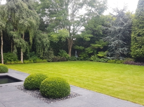 Tully Landscapes - winner Private Gardens over €100,000