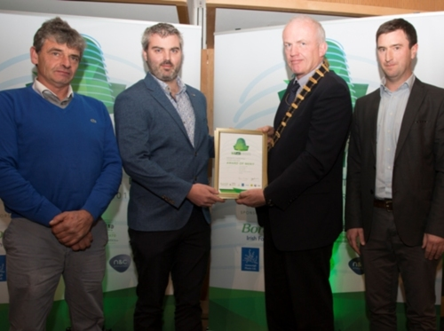 Tully Landscapes - Award of Merit Private Gardens over €30,000